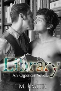 thelibrary large