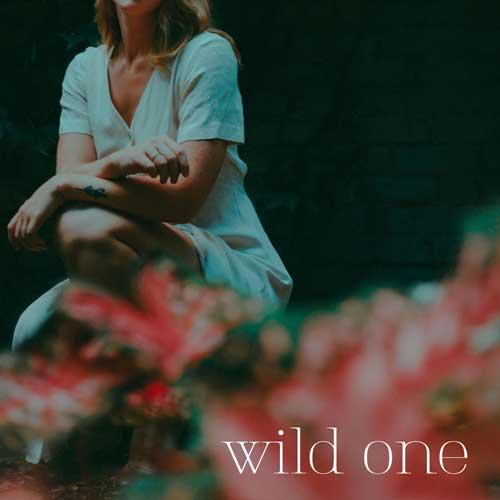 WILD ONE ALBUM ART