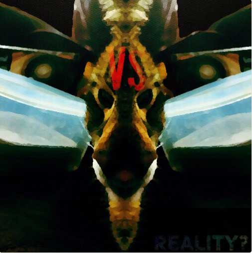 VS Reality1