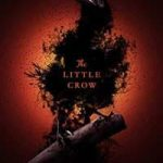 book review the little crow by caitlin ricci 43 1500481002