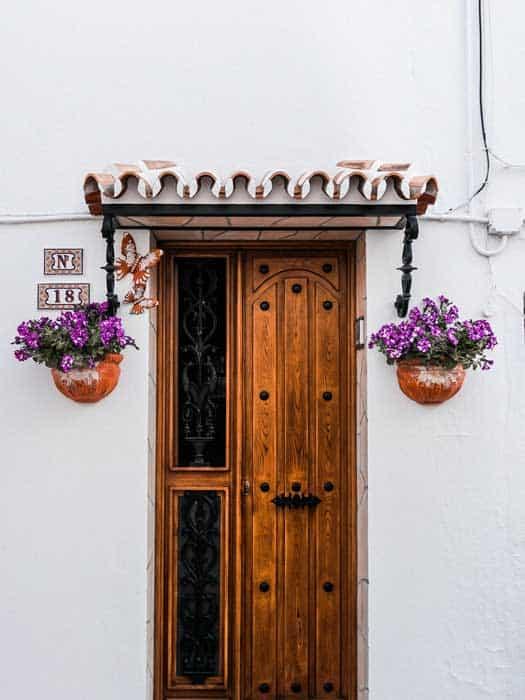 brown wooden door beside two purple petaled flowers 10537782