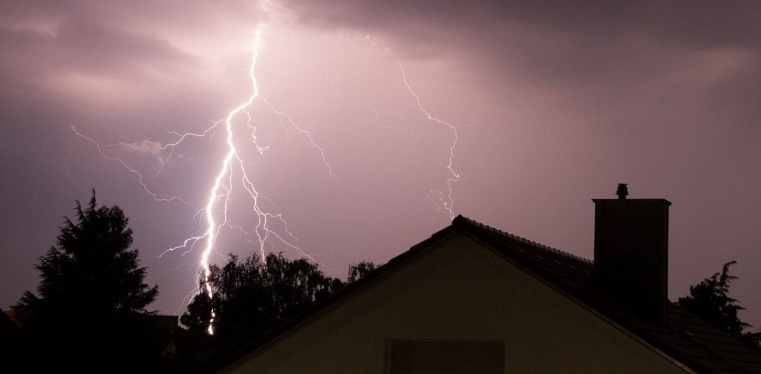 What To Do After Your Tree Gets Struck by Lightning