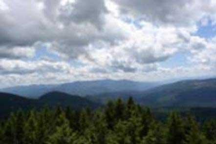 Deer Ridge