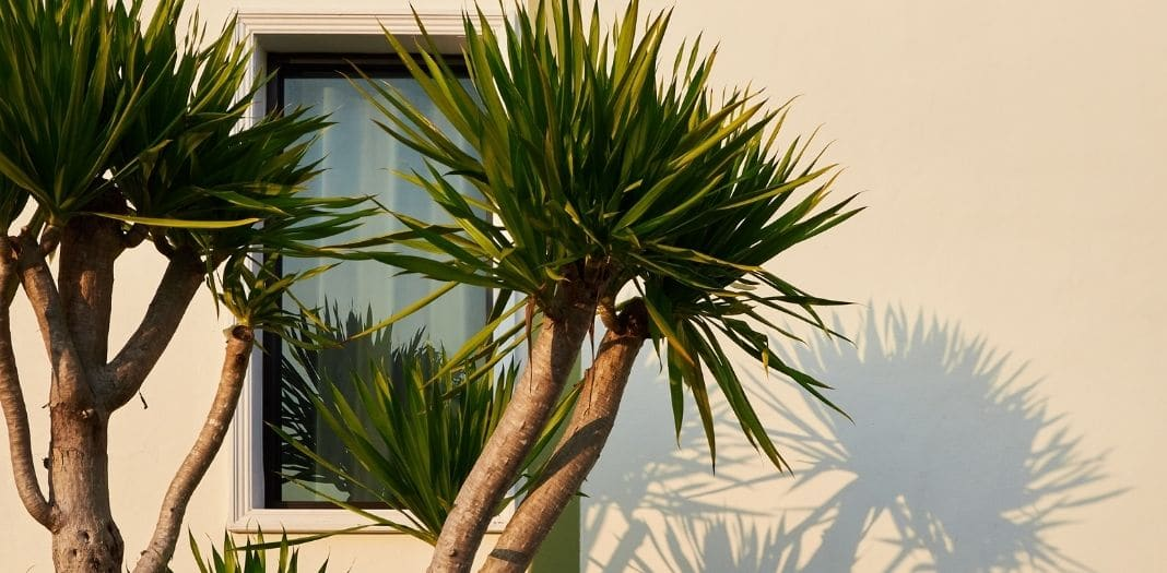 Tips for Attracting Home Buyers To Your Tropical Home